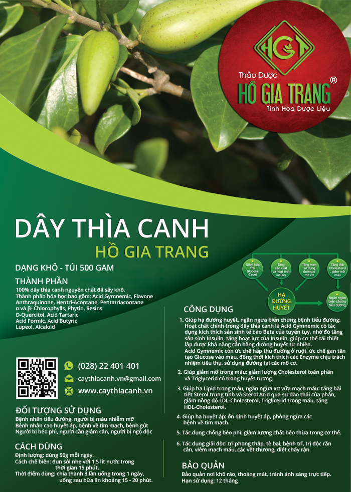 Dây thìa canh Hồ Gia Trang ( Dạng khô – Túi 500 gam )